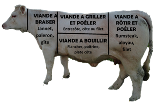 vache_pieces_boucher